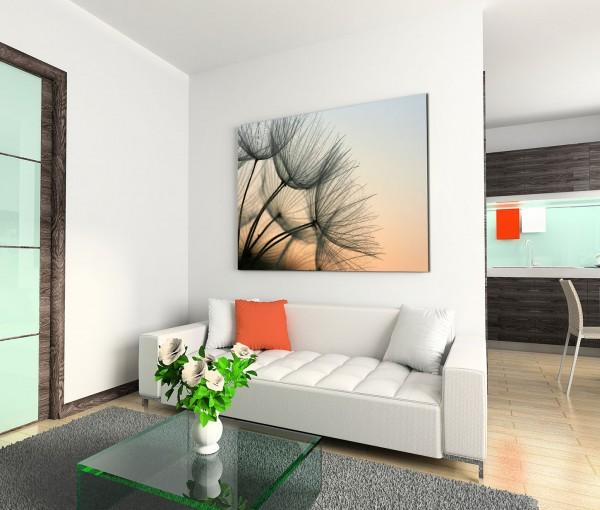 120x80cm Wandbild Pusteblumen Abendlicht Nahaufnahme