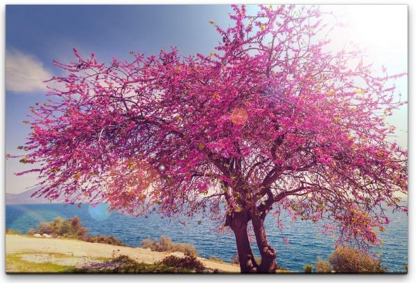 blühender Baum Wandbild in verschiedenen Größen