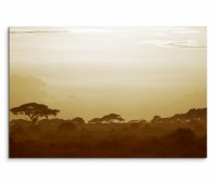 120x80cm Wandbild Afrika Kenia Savanne Sonnenuntergang