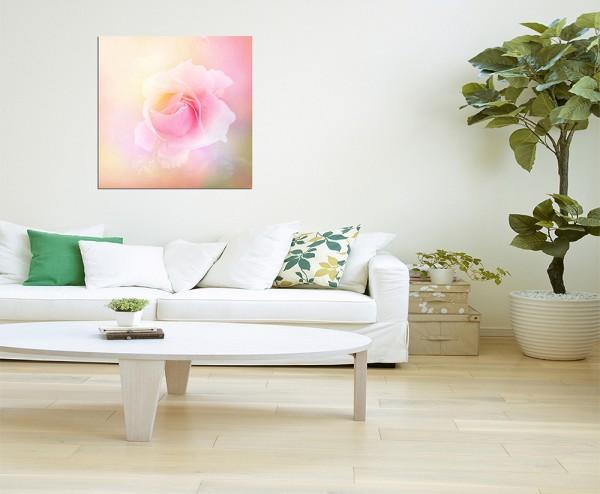 80x80cm Rose Romantik rosa abstrakt