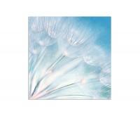 80x80cm Pusteblumen blau abstrakt