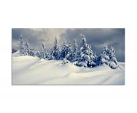 120x80cm Winterlandschaft Schneedecke Bäume