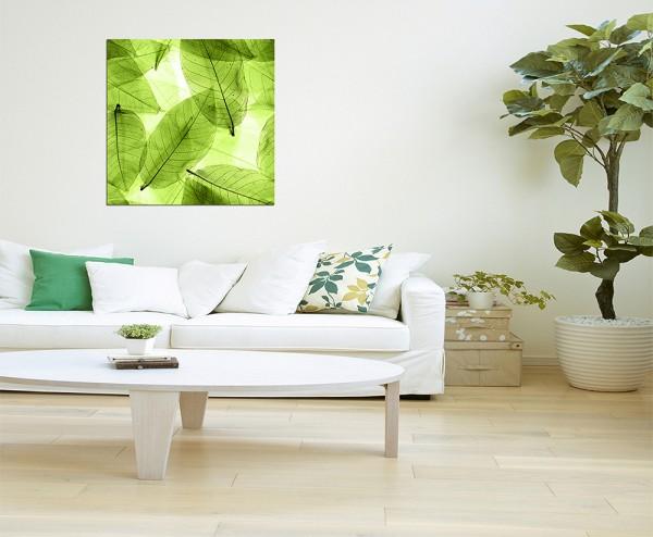 80x80cm Blätter Pflanze Hintergrund grün makro