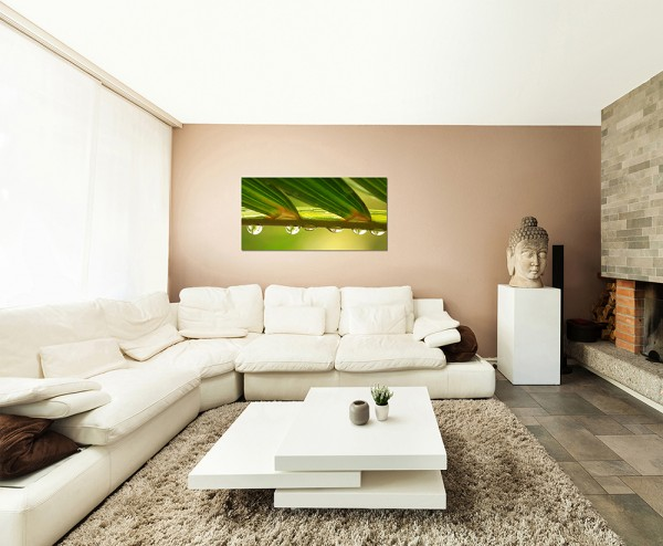 120x80cm Blätter Pflanze Wassertropfen Natur makro
