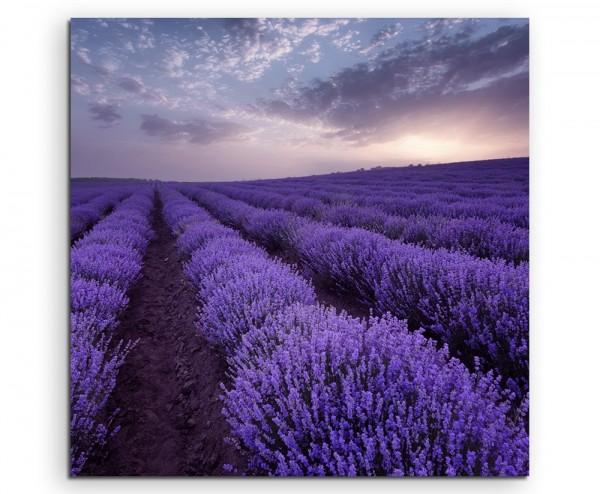 Landschaftsfotografie Lavendelfelder bei Sonnenaufgang auf Leinwand exklusives Wandbild moderne Fo