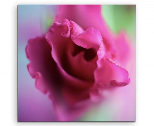 Naturfotografie – Pinke Blüte auf Leinwand exklusives Wandbild moderne Fotografie für ihre Wand in v
