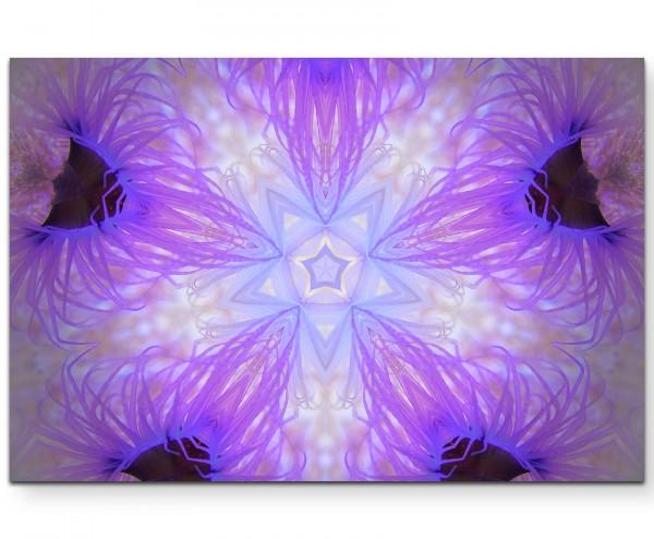Violette Anemonen – Unterwasser - Leinwandbild