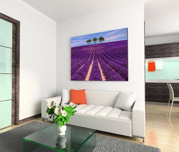 120x80cm Wandbild Lavendelfeld Bäume Sommer Abendlicht