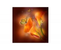 80x80cm Lilie Blüte Schmetterlinge