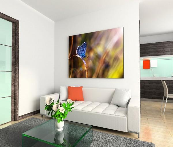 120x80cm Wandbild Schmetterling Wiese Sonnenstrahlen