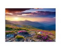 120x80cm Berge Alpenrosen Berge Himmel Sommer