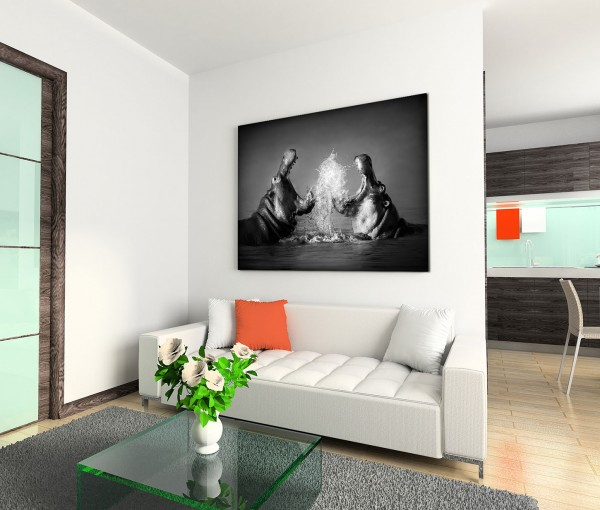 120x80cm Wandbild Nilpferde Wasser Kampf Nahaufnahme