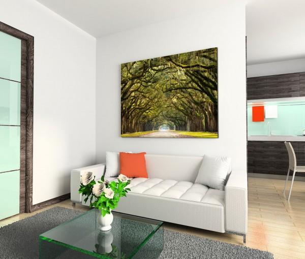 120x80cm Wandbild Georgien Baumtunnel Moos Herbst