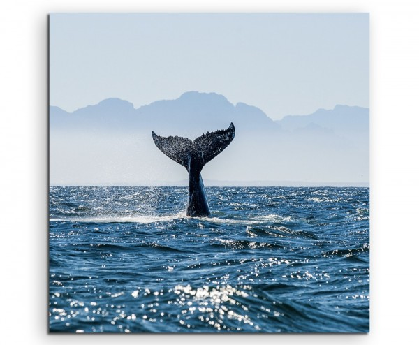 Naturfotografie – Flosse eines Buckelwals im Meer Südafrika auf Leinwand exklusives Wandbild moderne