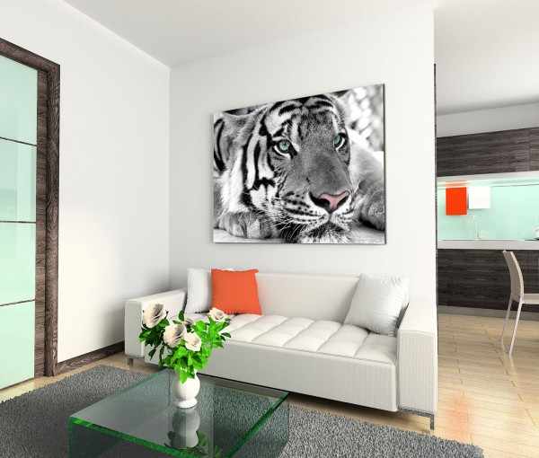 120x80cm Wandbild Tiger Kopf Gesicht Nahaufnahme