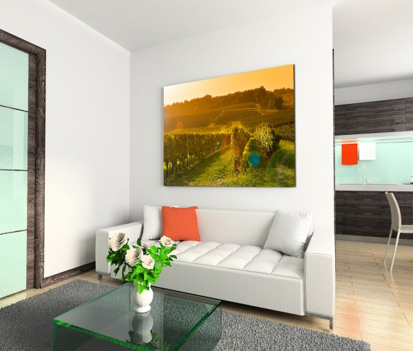 120x80cm Wandbild Bordeaux Weinberg Sonnenstrahlen