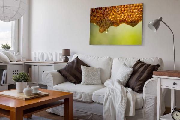 Frischer Bienenhonig - Leinwandbild