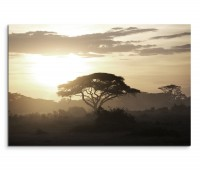 120x80cm Wandbild Kenia Akazie Baum Sonnenuntergang