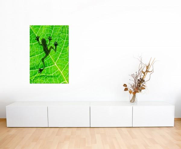 120x80cm Frosch Blatt Schatten