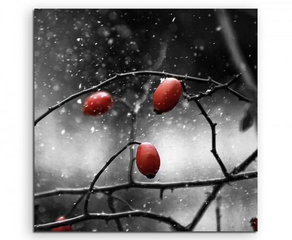 Naturfotografie – Hagebutten im Schnee auf Leinwand exklusives Wandbild moderne Fotografie für ihre
